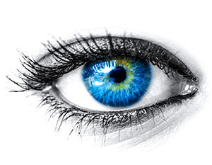 Contact Lenses Belleview Eye Associates
